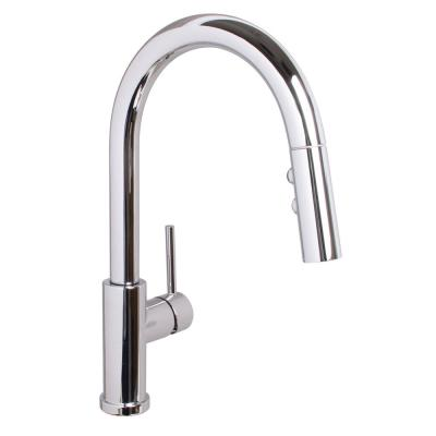 Neo Single-Handle Pull-Down Sprayer Kitchen Faucet in Polished Chrome
