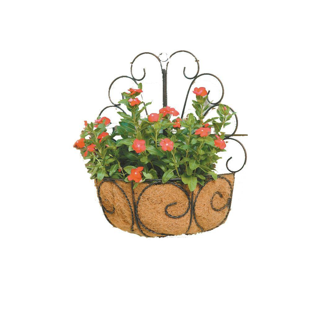 Deer Park Metal Peacock Wall Basket With Coco Liner Wb107x The