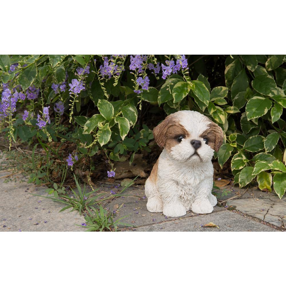 Shih Tzu Puppy Brown and White Statue