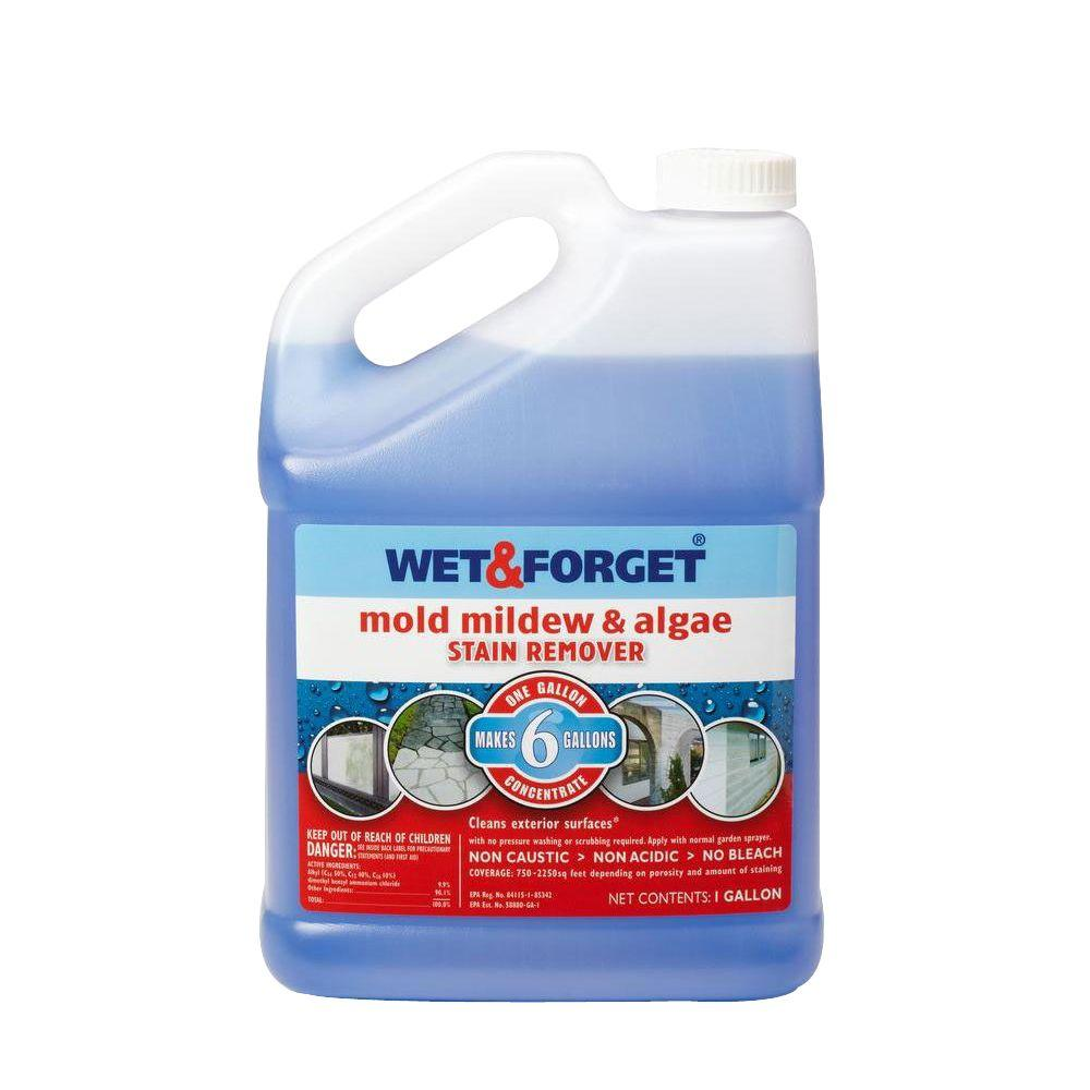Wet Forget 1 Gal Mold Mildew And Algae Stain Remover 800066ca The Home Depot