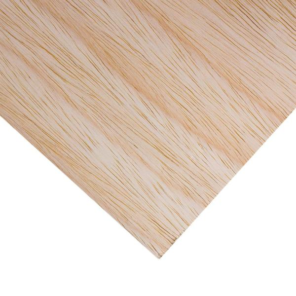 Dimensions Sande Plywood Common 1 2 In X 2 Ft X 4 Ft Actual 0 472 In X 23 75 In X 47 75 In 225474 The Home Depot
