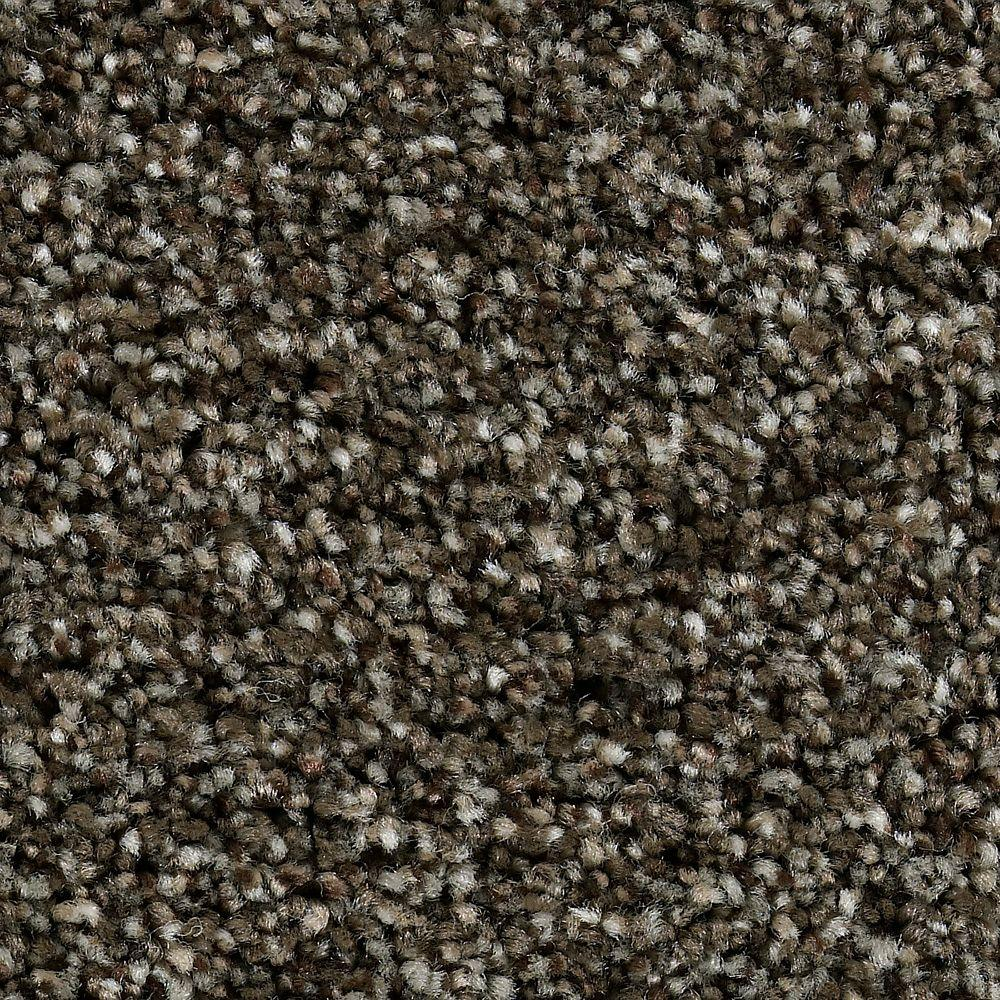 Home Decorators Collection Greenlee I - Color Rustic Charm 12 ft. Carpet