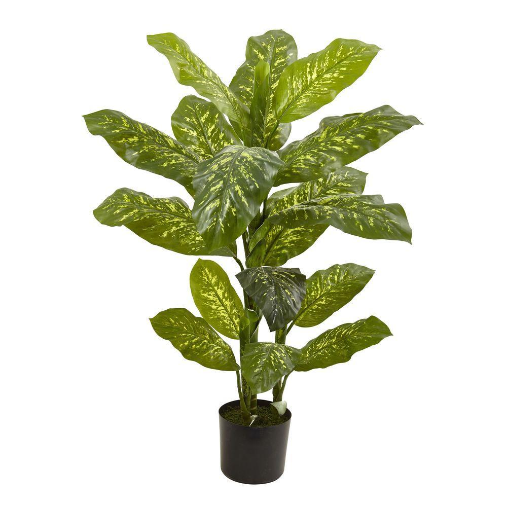 4 ft. Real Touch Dieffenbachia Plant