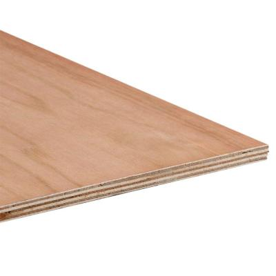 Columbia Forest Products 3 4 In X 4 Ft X 8 Ft Purebond Birch