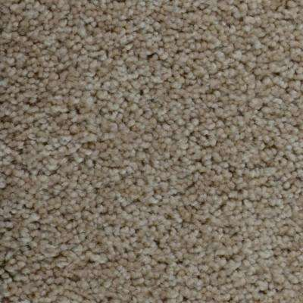 Carpet Sample - Precipice - Color Incline Texture 8 in. x 8 in.