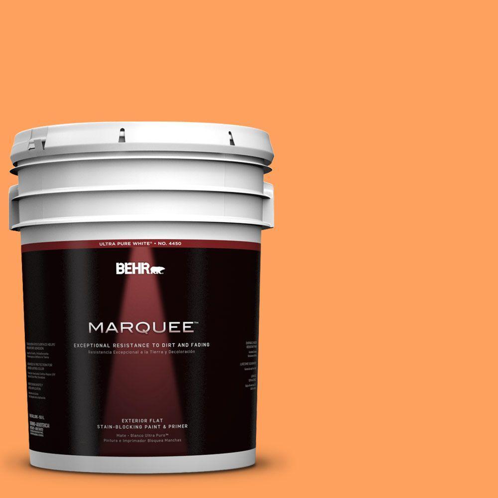 BEHR MARQUEE 5-gal. #250B-5 Orange Spice Flat Exterior Paint