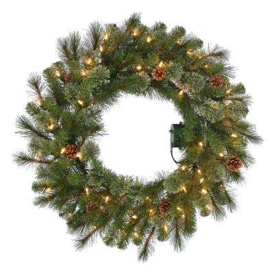 30 in. Pre-Lit B/O LED Alexander Pine Artificial Christmas Wreath x 140 Tips with 50 Warm White Lights