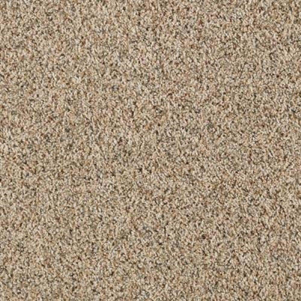 tan carpet floor. LifeProof Carpet Sample - Kaa I Color Ashen Tan Texture 8 In. X Floor A