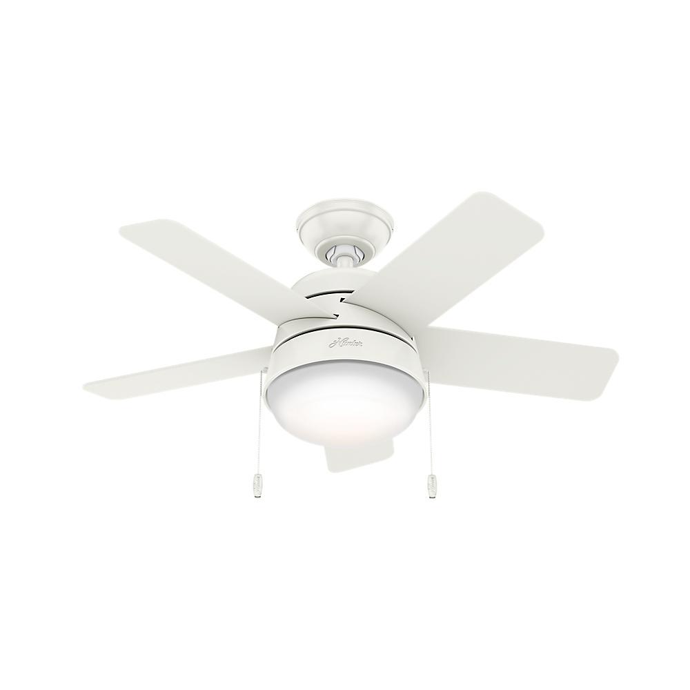 Hunter Tarrant 36 in. LED Indoor Fresh White Ceiling Fan with Light Kit