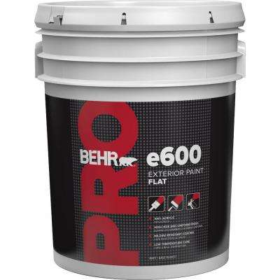 5 gal. e600 White Flat Exterior Paint
