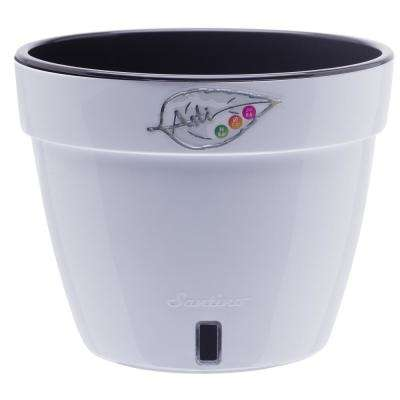 Asti 10.6 in. White/Black Plastic Self Watering Planter