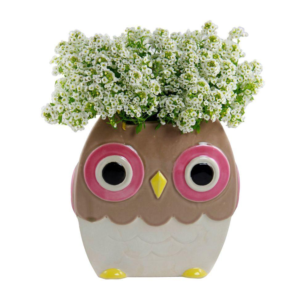 Pennington 6 In Brown Ceramic Whimsical Owl 100512992 The Home Depot