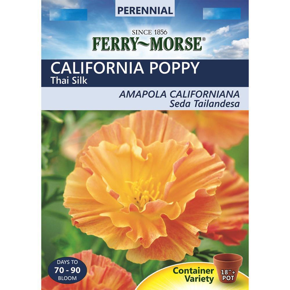 Ferry Morse California Poppy Thai Silk Seed 9503 The Home Depot