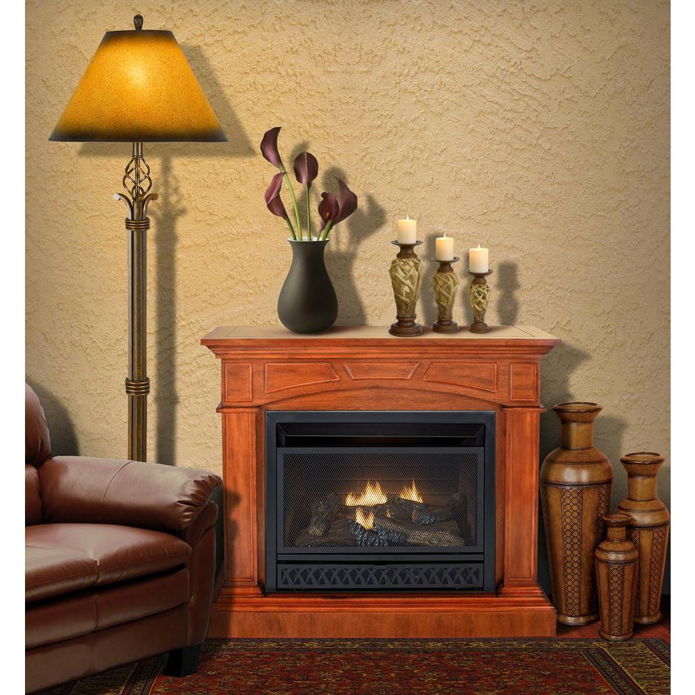 Superb Direct Vent Gas Fireplace Insert Home Depot Fireplace Home Interior And Landscaping Mentranervesignezvosmurscom
