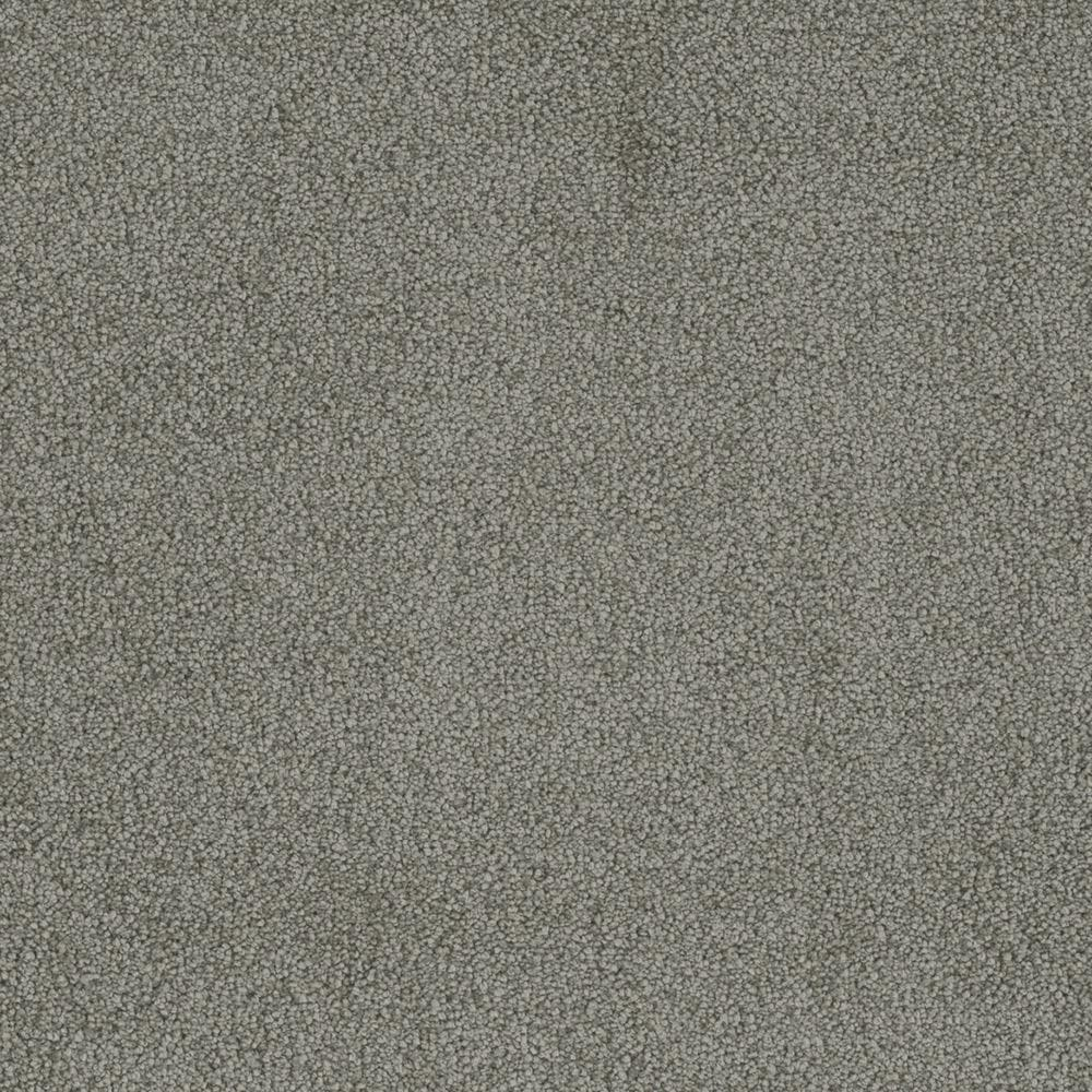 Home Decorators Collection Carpet Sample Sweet Dreams Ii Color Platinum Saxony 8 In X