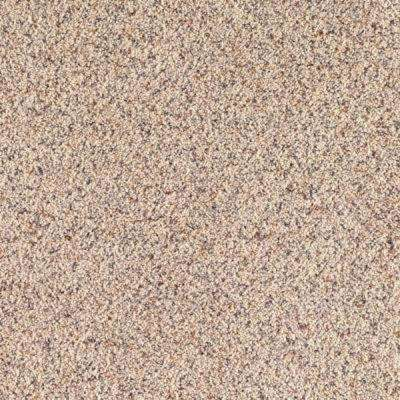 Carpet Sample - Lush I - Color Snow Bank Texture 8 in. x 8 in.