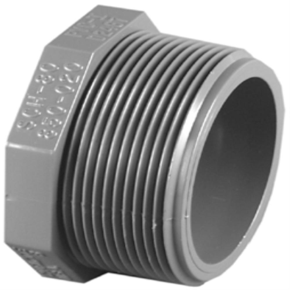 1/2 in. SCH 80 Plug MPT