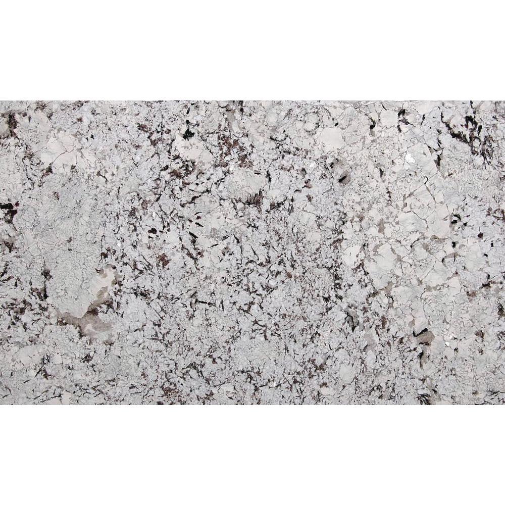 STONEMARK 3 in. x 3 in. Granite Countertop Sample in Mystic Spring