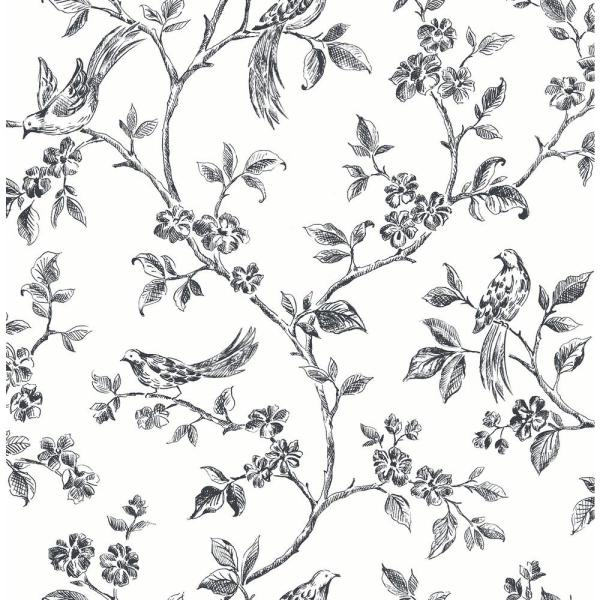 Advantage Ray Black Bird Trail Wallpaper Sample 2813-24976SAM