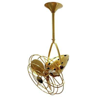 Jarold Direcional 13 in. Indoor/Outdoor Brushed Brass Ceiling Fan with Wall Control