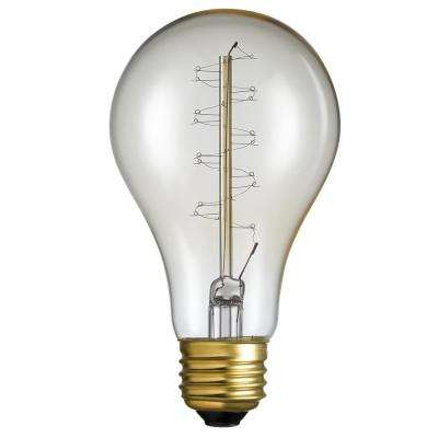 40-Watt A21 Vintage Twister Filament Incandescent Light Bulb (1-Bulb)
