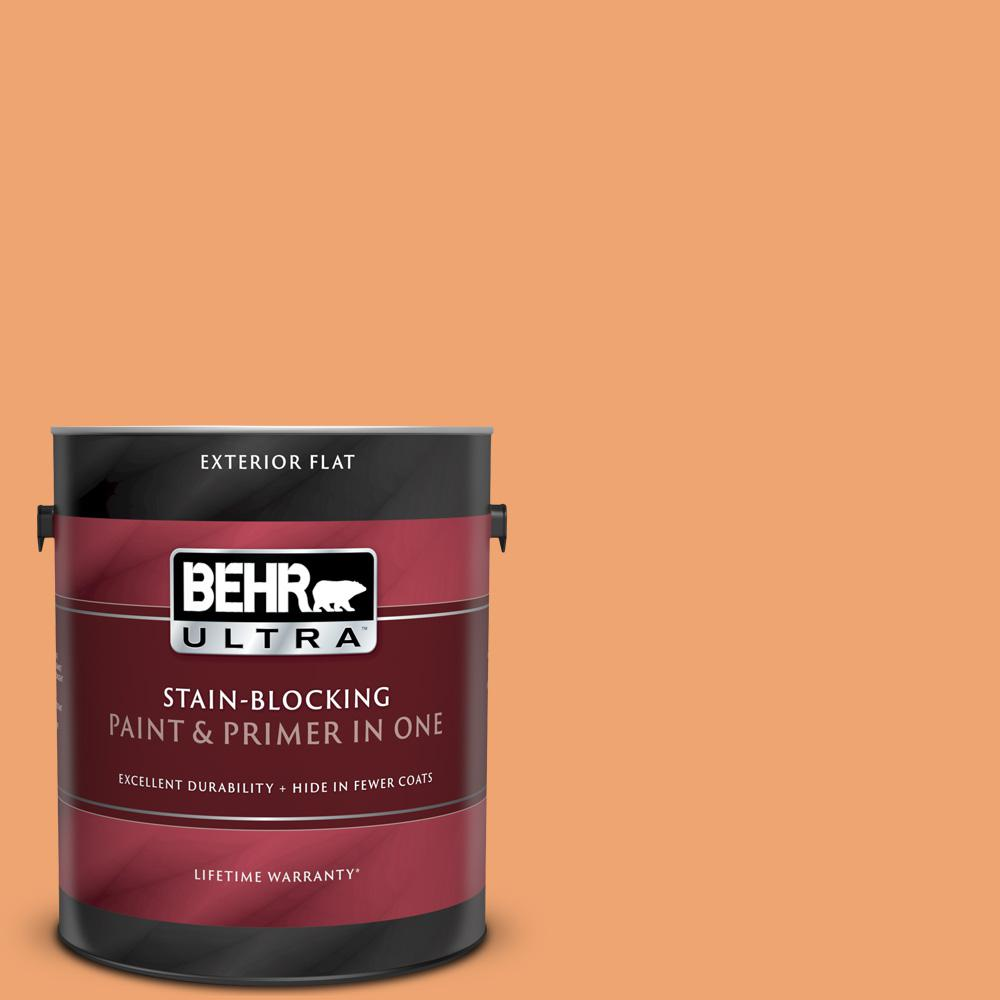 Reviews For Behr Ultra 1 Gal Home Decorators Collection Hdc Sp16 04 Apricot Jam Flat Exterior Paint Primer 485401 The Home Depot