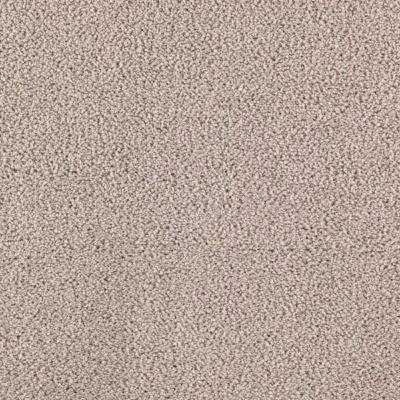 Carpet Sample - Collinger II Color - Blessing Texture 8 in. x 8 in.