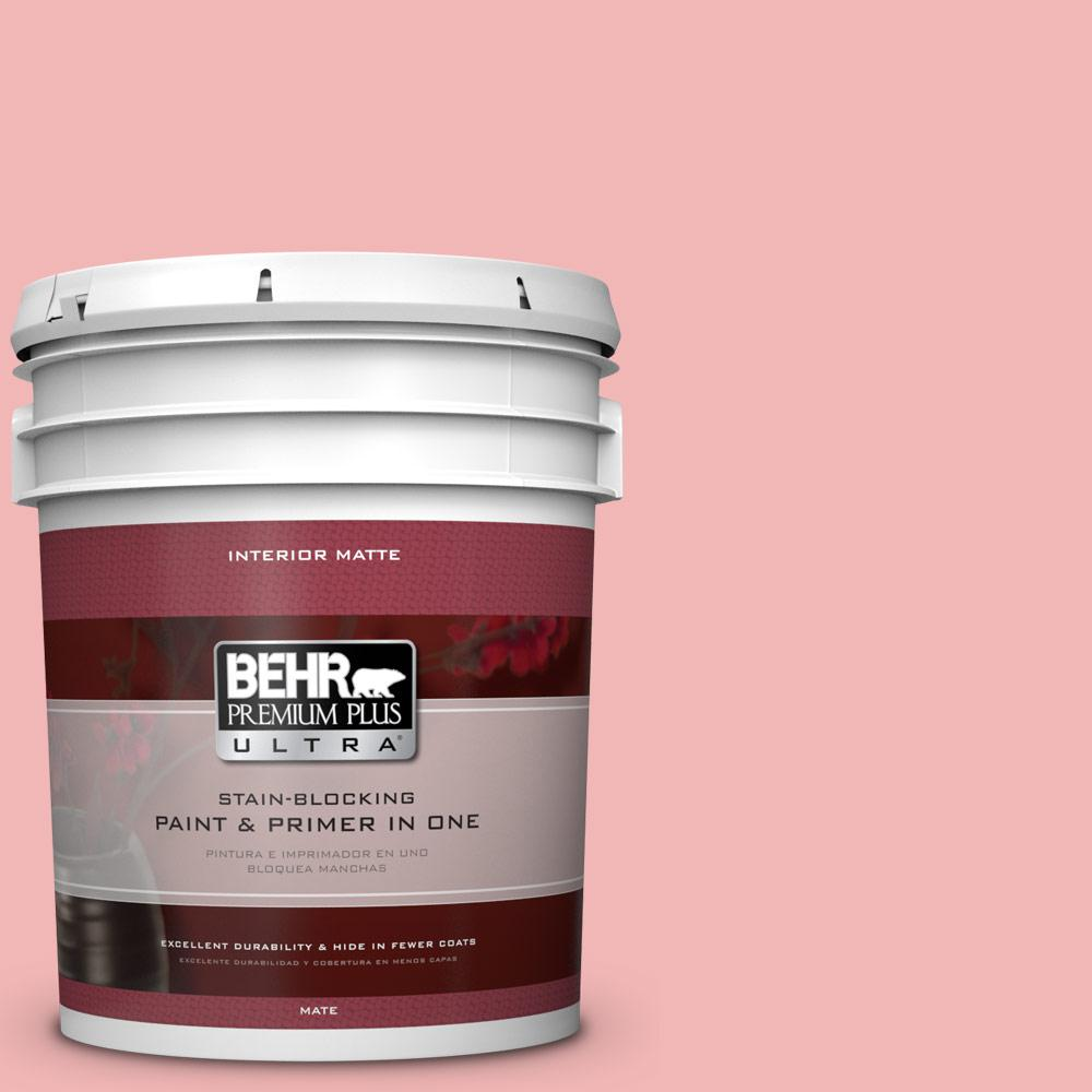 5 gal. #P170-2 Old Flame Matte Interior Paint