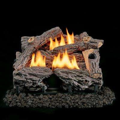 22 in. Vent-Free Dual Fuel Gas Log Set in Split Bark with Thermostat Control