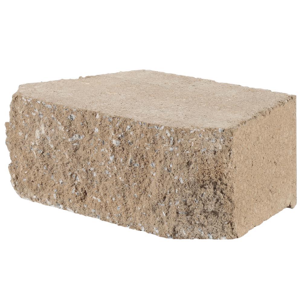 Block Board Home Depot ~ Cm succulent home depot