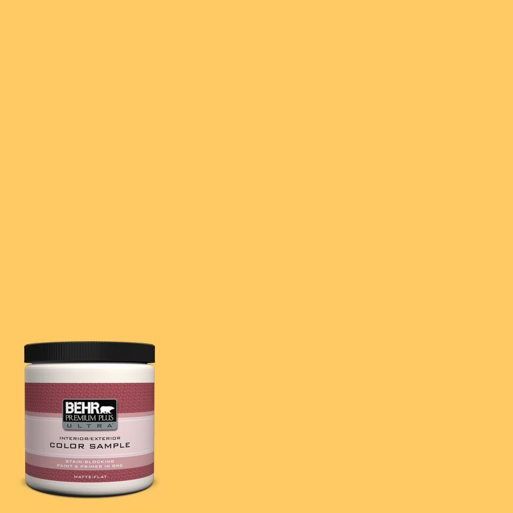 BEHR Premium Plus Ultra 8 oz. #P260-6 Smiley Face Matte Interior/Exterior Paint and Primer in One Sample Before delving into a big painting project, preview the color with the BEHR Premium Plus Ultra 8 oz. Sample. Formulated with both paint and primer, this sample allows you to conveniently apply paint to interior or exterior surfaces and accurately envision coverage. This sample covers up to 16 sq. ft. Color: Smiley Face.