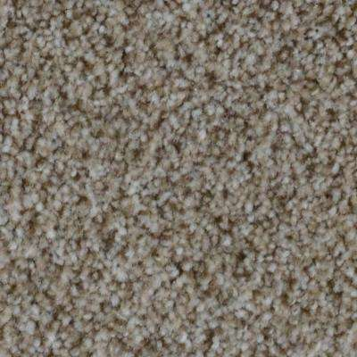 Carpet Sample - Appalachi II (S), (F) - Color Skyline (F) Texture 8 in. x 8 in.