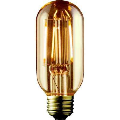 40W Equivalent Warm White T14 Amber Lens Vintage Radio Lamp Dimmable LED Light Bulb (2-Pack)