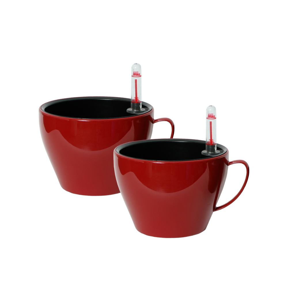 Modena 5.5 in. Cappuccino Cup Gloss Red Plastic Planters (Pack of
