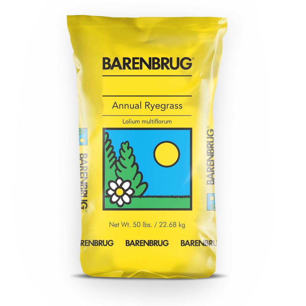 50 lb. Panterra V OverSeeding Rye Grass Seed