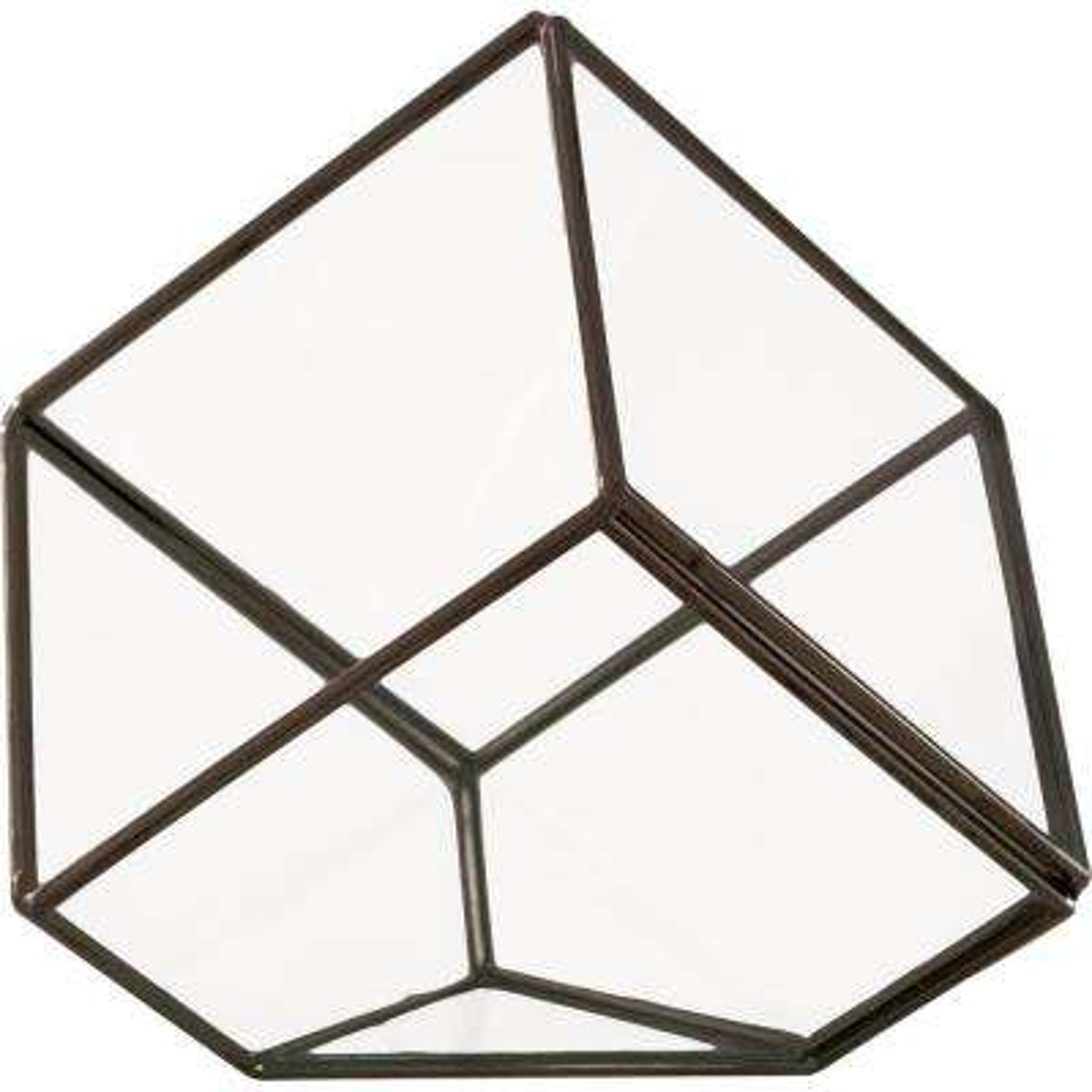 Mika 4 in. x 6 in. Glass Faceted Cube Terrarium