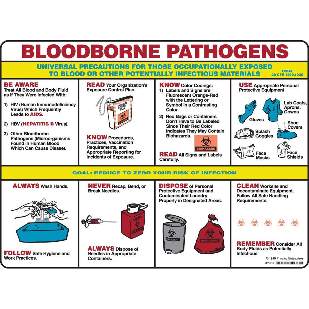 blood borne pathogens This course will teach employees about the hazards of bloodborne pathogens in the workplace and the basic controls required under osha's bloodborne pathogen.