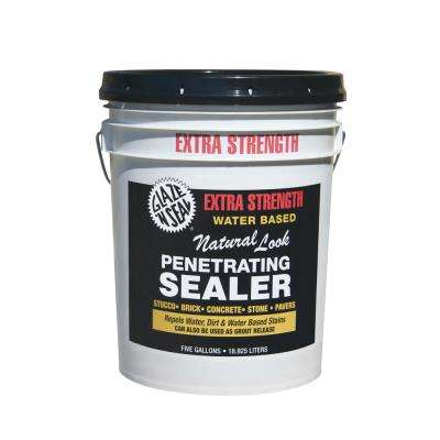 5 gal. Extra Strength Natural Look Penetrating Sealer