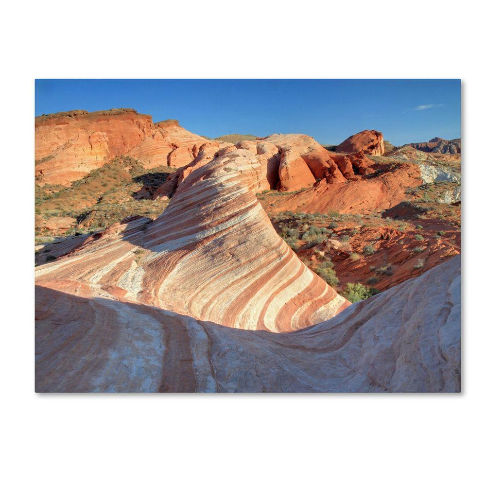 14 in. x 19 in. Valley of Fire Wave Canvas Art