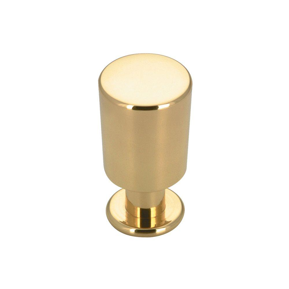 Richelieu Hardware Contemporary and Modern 5/8 in. Brass Cabinet Knob