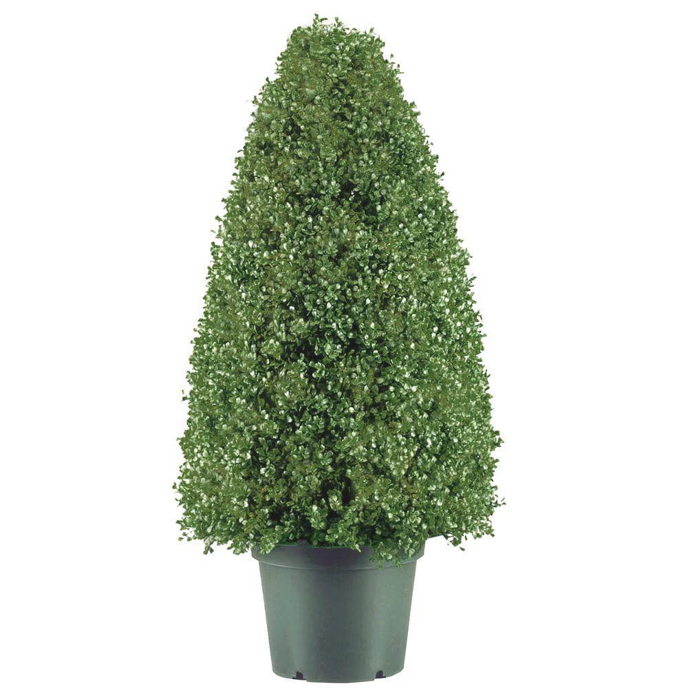 30 in. Boxwood Artificial Tree in Dark Green Round Plastic Urn