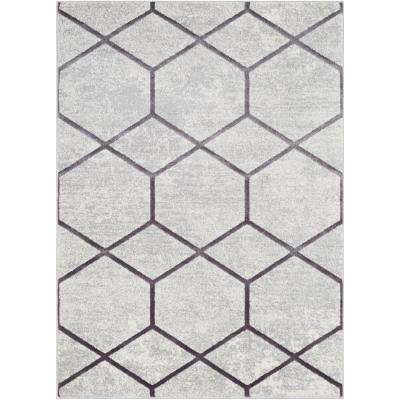 Sagara Gray 5 ft. x 7 ft. Area Rug