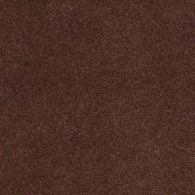 Carpet Sample - Tremendous II - Color Baked Clay Texture 8 in. x 8 in.