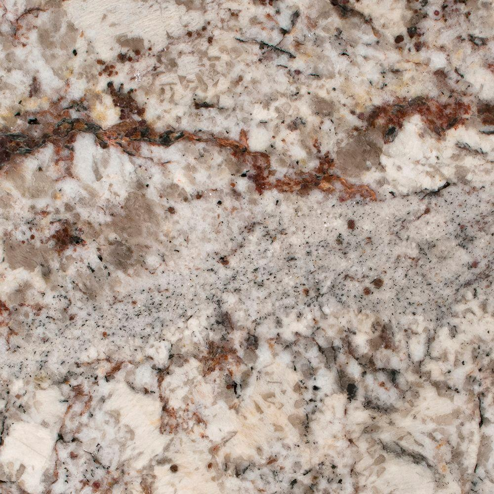 Stonemark Granite 3 in. x 3 in. Granite Countertop Sample in White Springs