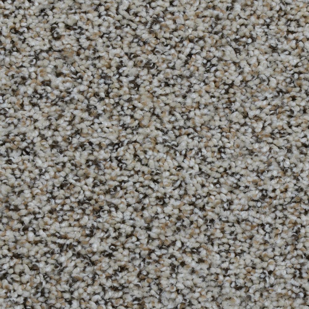 Carpet Sample - Gallant - Color Castle Twist 8 in. x 8 in.