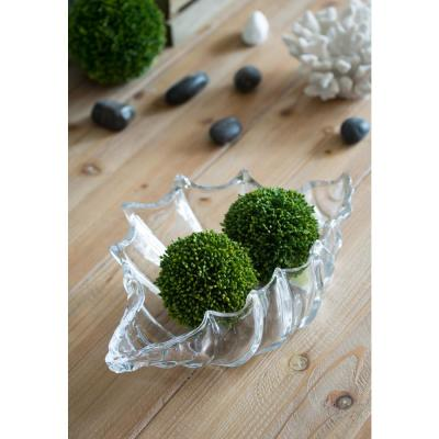 15 in. x 3.5 in. Clear Glass Decorative Shell Bowl