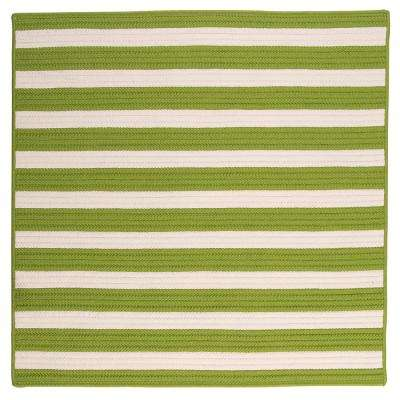 Baxter Lime 6 ft. x 6 ft. Square Indoor/Outdoor Braided Area Rug