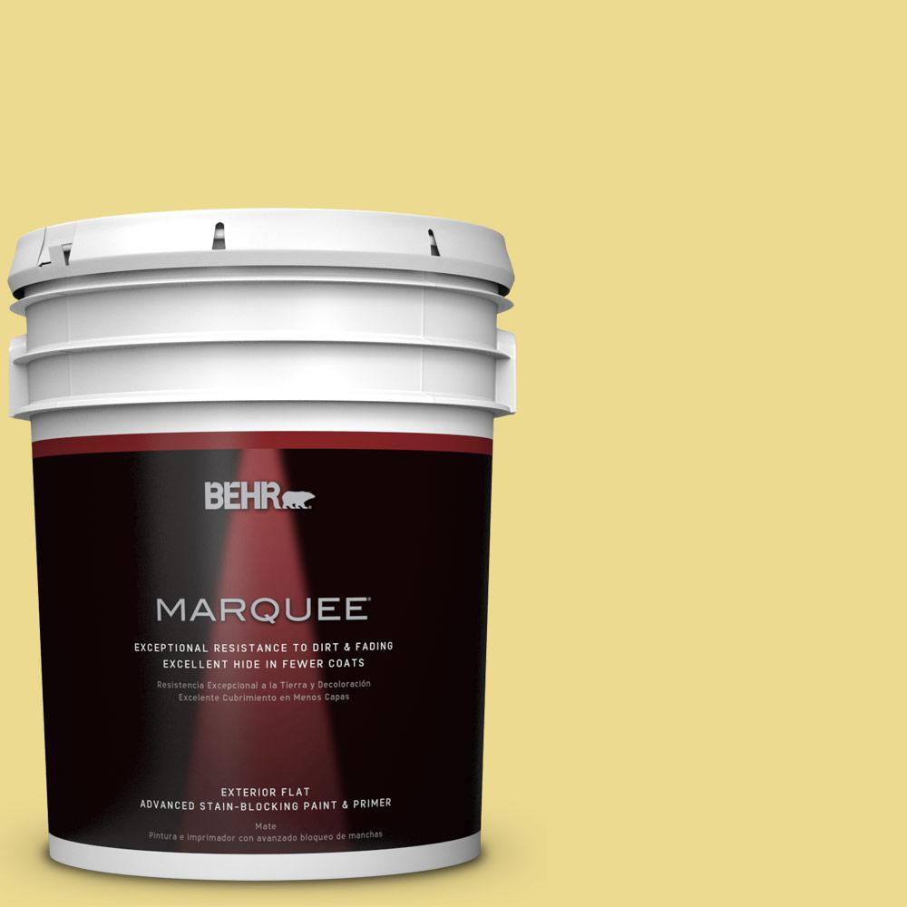 BEHR MARQUEE 5-gal. #P320-4 Pineapple Crush Flat Exterior Paint