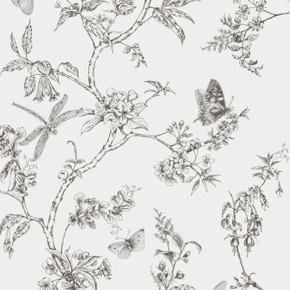 White Mica Nature Trail Wallpaper