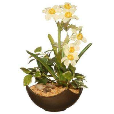 9 in. Potted Narcissus Plant